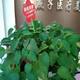 怀着激动的心情我连夜坐车赶到了北京,来到了北京金燕子医疗美容机构。八月的北京天气很热,好在医院位置非常好,就在地铁站附...