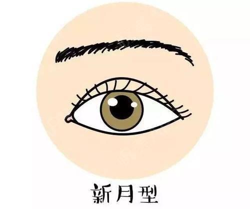 双眼皮的小心机,你又知多少?963.jpg