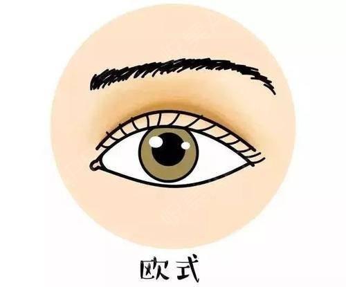 双眼皮的小心机,你又知多少?1121.jpg