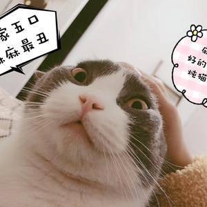 悦Mer_9400731040的日记分享第2页图
